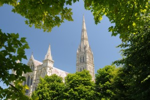 Salisbury Cathedral surrounded by leaves