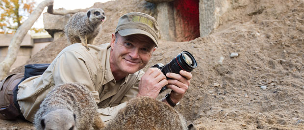 Simon King in the meerkat colony at Longleat
